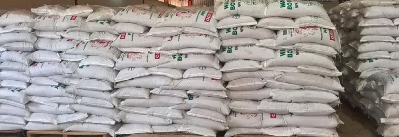 صادرات سیمان به عراق